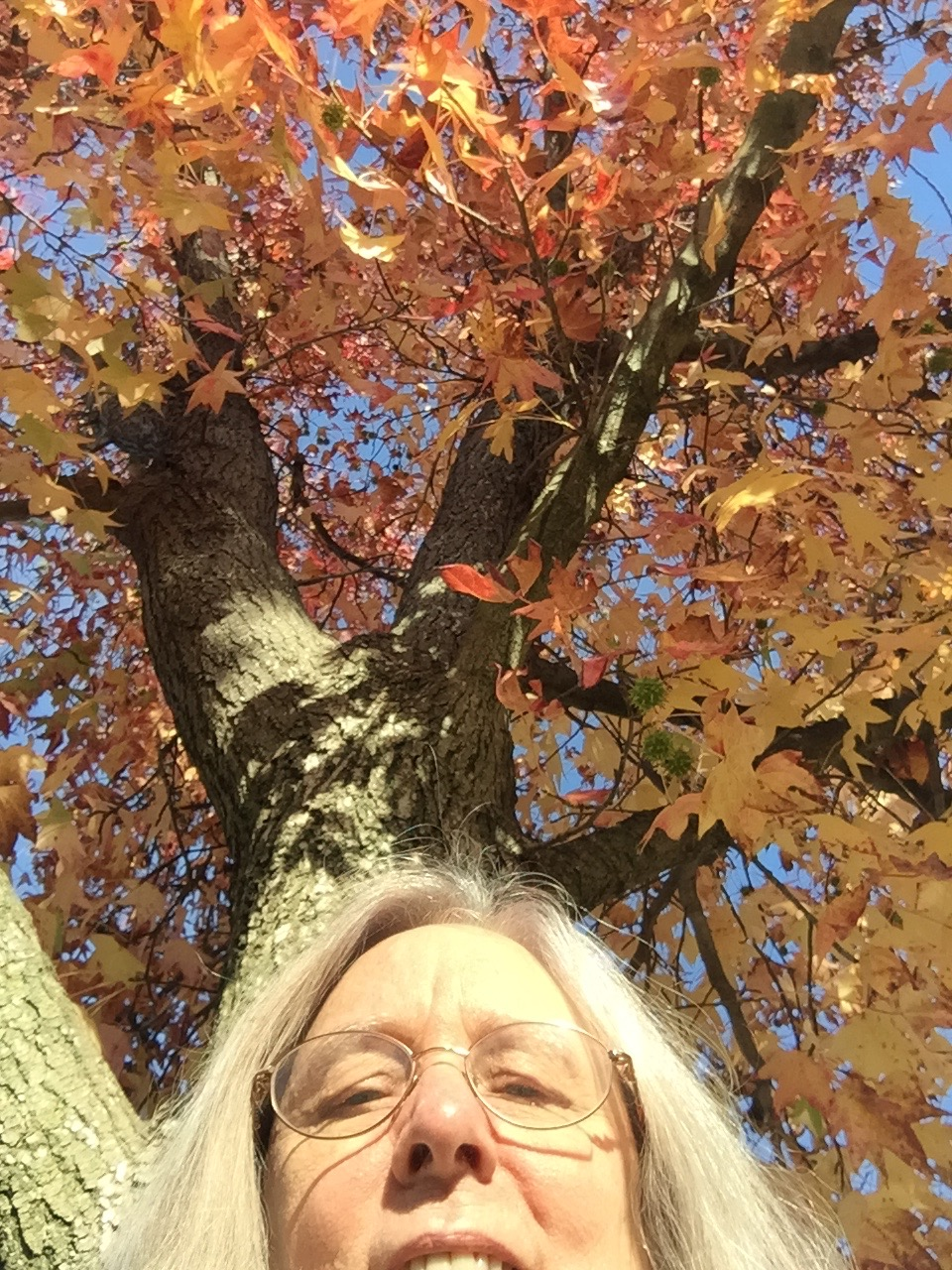 Ann under an autumn tree