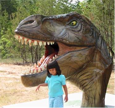 T-Rex head and small child at the Dinosaur Park in Texas