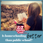 Are you still wondering if homeschooling is better than public school? While there are many studies on homeschooling out there, we've compiled a quick list of how homeschool stacks up against public school. Read more now!