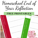 Have you thought about reflecting on your year? Take a moment and reflect on the year that has passed. Don't worry, I have some FREE printables to help!