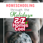 It is hard to homeschool through the holidays, unless you take holiday activities to also be educational. Gift ideas, too, can be used for education.