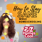 How to Stay Sane While Homeschooling Thumbnail