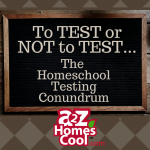 Should homeschoolers test? Here are some of the reasons I've decided to test my homeschoolers.