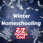 Enjoy the winter months with these educational and fun homeschool ideas.